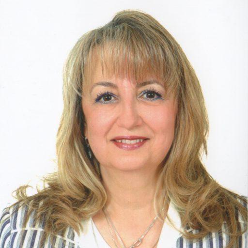 Sibel A. Ozkan